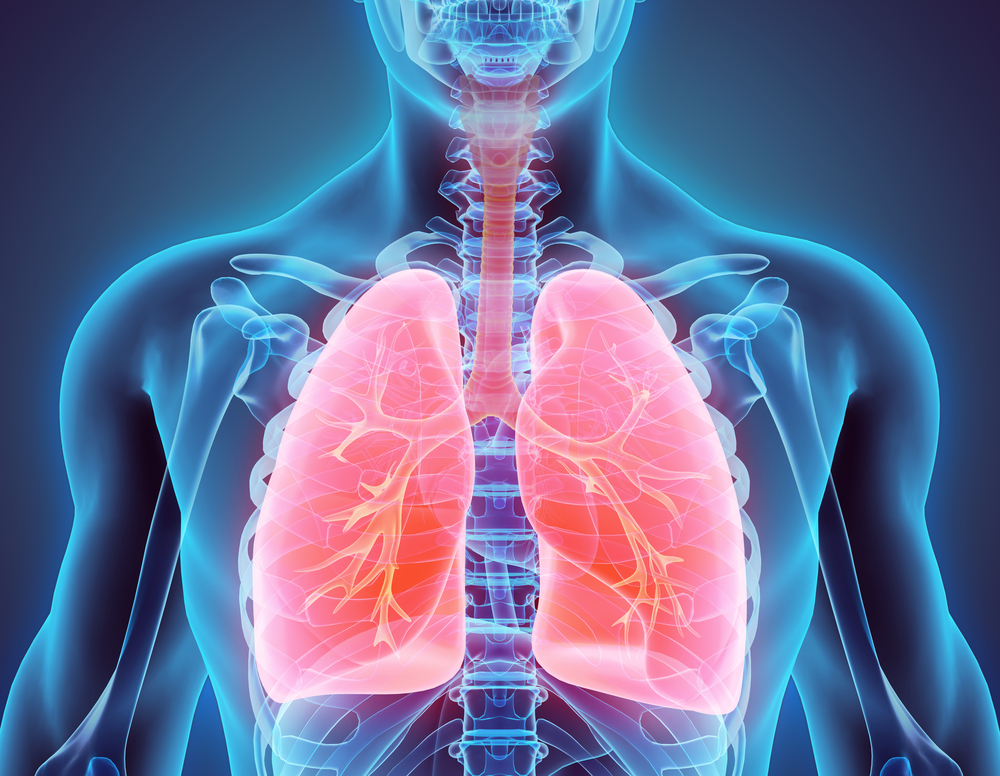 Image result for Lung Diseases